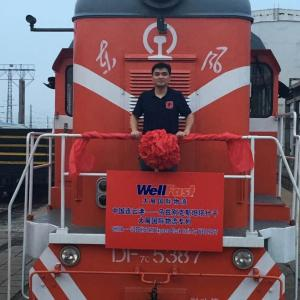 Whole Express Block Train Shipment from China Wellfast Logistics